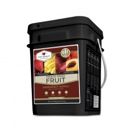 Wise Freeze Dried Fruit Gluten Free 156 Servings