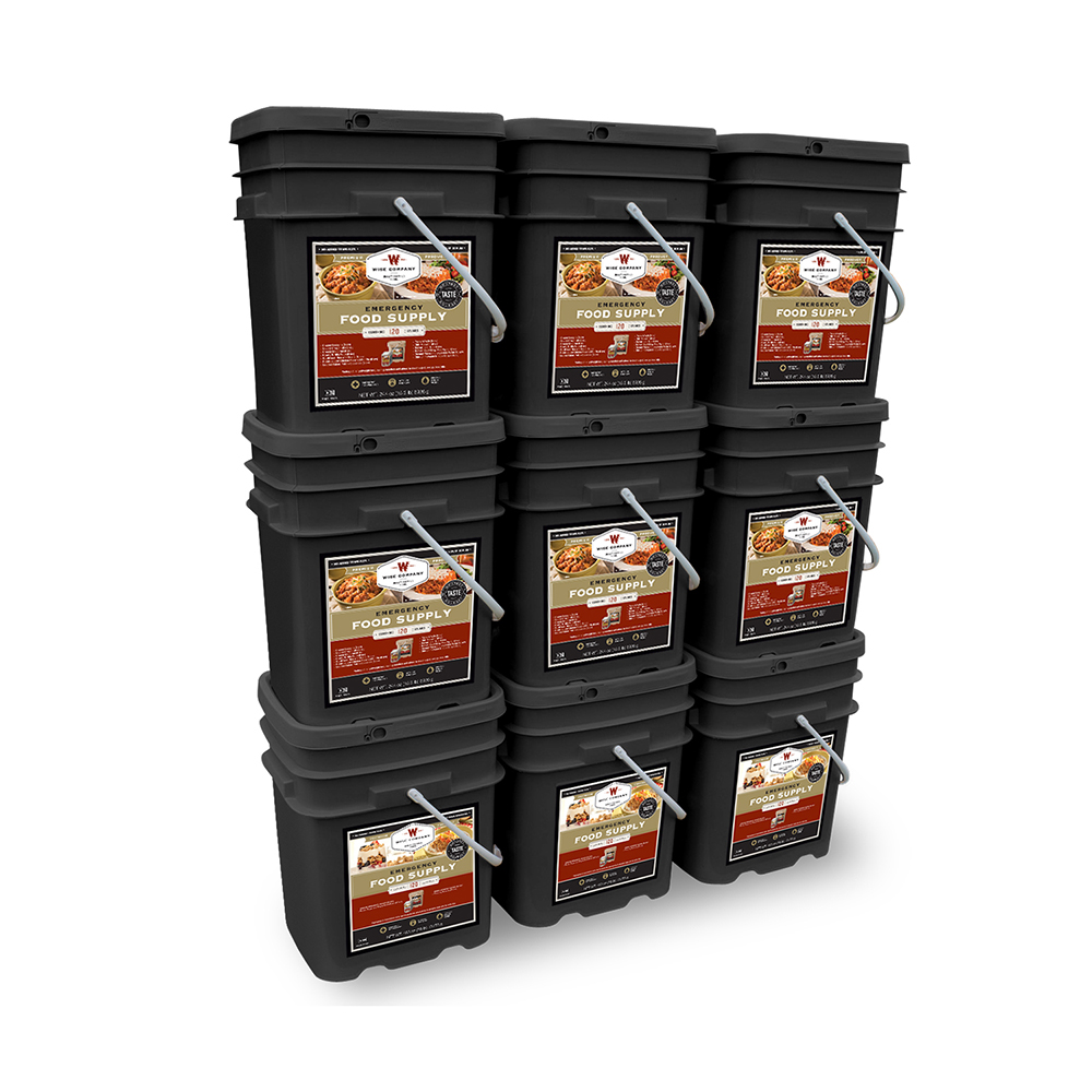Wise 1080 Servings Package