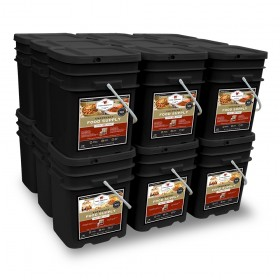 Wise 2160  Servings Package